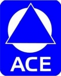 2009 Ace Award Superstar