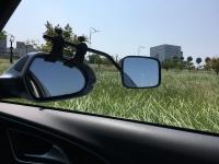 falcon mirrors 4